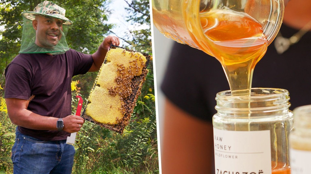 How Expert Beekeepers Harvest Honey