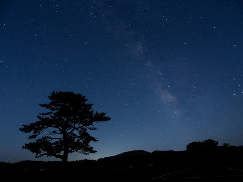 80 percent of US children may never see a starry sky