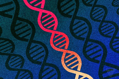 Two-thirds of Americans approve of editing human DNA to treat disease
