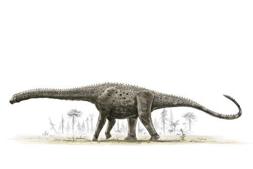 Researchers say they've found the biggest dinosaur ever