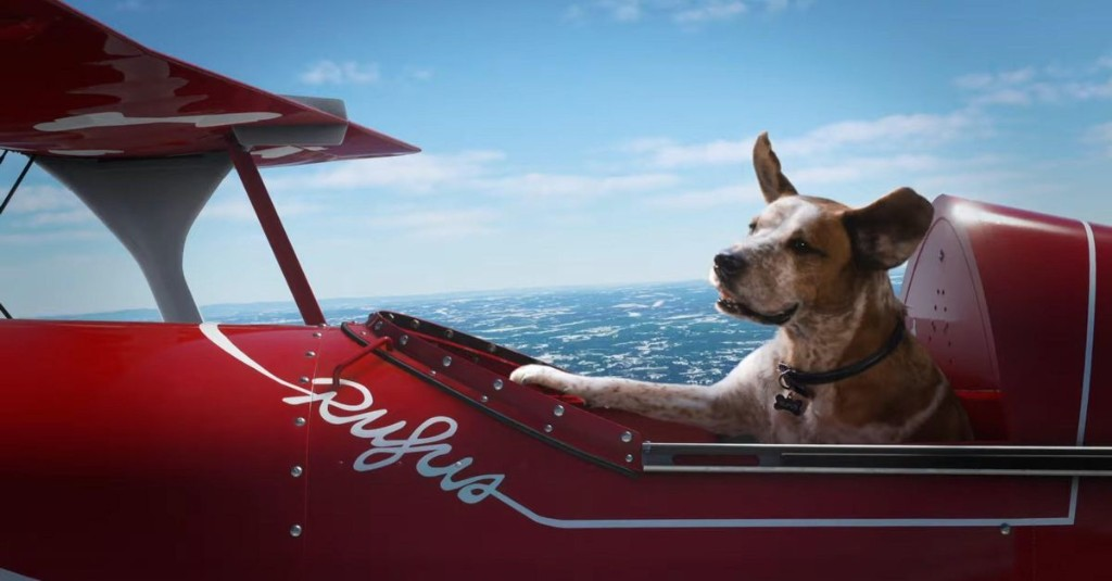 Microsoft's best commercial features dogs frolicking in Halo, Minecraft, and Flight Simulator