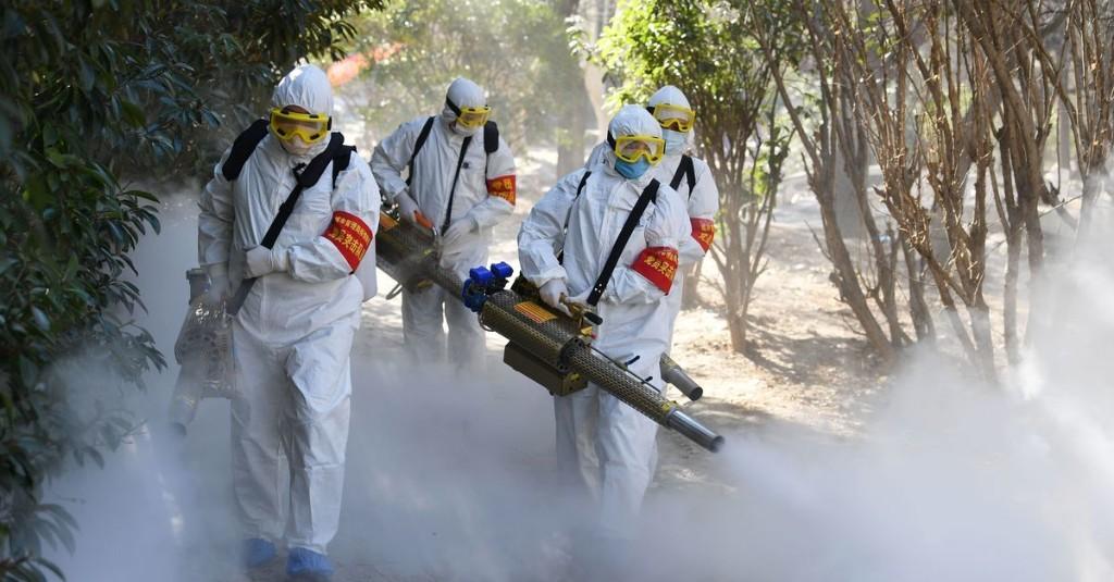 Coronavirus Outbreak: Updates and Explainers cover image