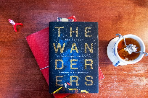 The Wanderers is a beautiful take on the human cost of a mission to Mars