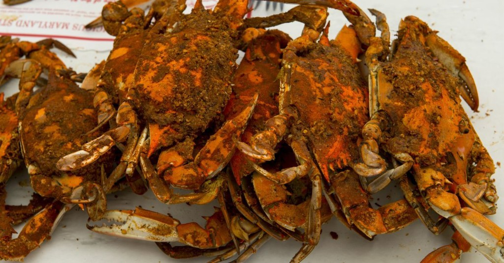 Blue Crab Season Persists in D.C. During the Coronavirus Crisis