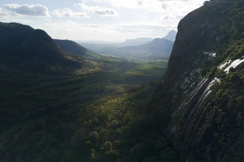 How Google Earth led a team of scientists to discover an untouched mountaintop rainforest