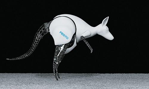 Robotic kangaroo borrows its bouncy moves from the real thing