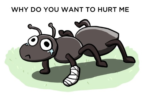 If you drop an ant from the top of the Empire State Building, will it die?