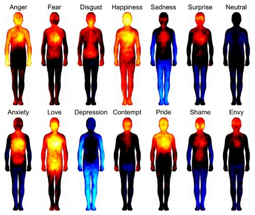 Neuroscientist Lisa Feldman Barrett explains how emotions are made