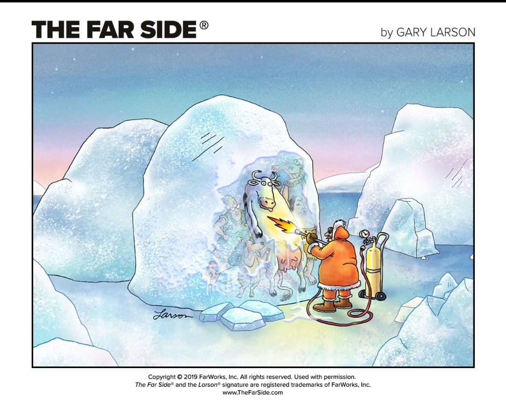 The Far Side - cover