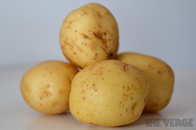 Irish potato famine mystery solved after 168 years