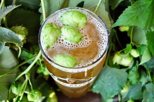 Seattle's 12 Essential Breweries