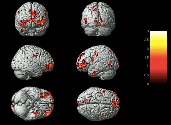 For the first time, scientists can identify your emotions based on brain activity