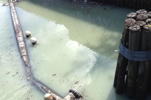 Dysentery, diarrhea, death: taking a sip from America's most polluted waterway