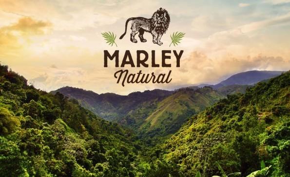 Bob Marley-branded weed is helping pot startups break funding records