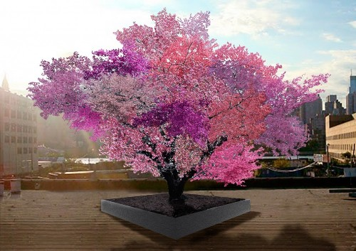 This colorful tree is designed to grow 40 types of fruit