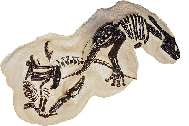 $7 million could buy you a pair of dueling dinosaur skeletons