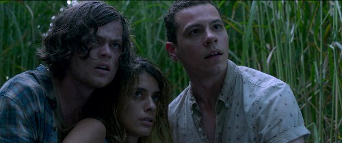 In the Tall Grass director Vincenzo Natali doesn't know if Stephen King read his script