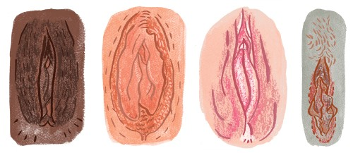 Flirtmoji designer admits some vulva emoji were inadvertently plagiarized