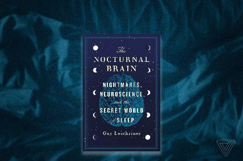 A sleep expert talks insomnia, dreams, and the neuroscience of slumber