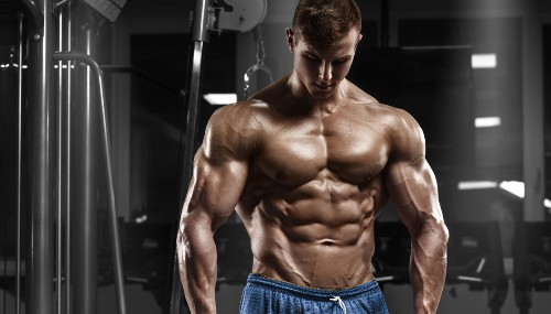 Workouts : 10 Best Exercises For Building A Strong Muscle