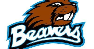 High school football: Beaver Beavers 2020 preview