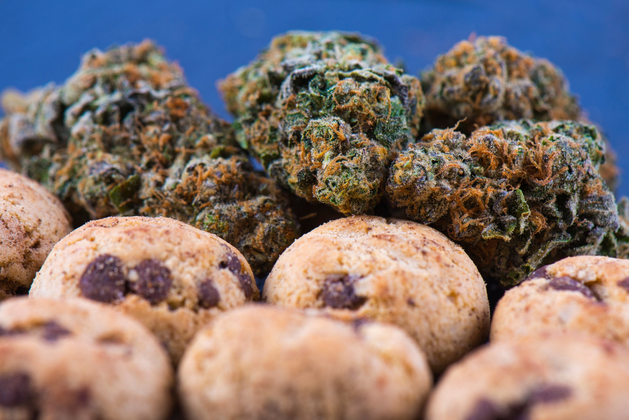 There's a Way to Legally Serve Cannabis in Restaurants, But It's Not Easy