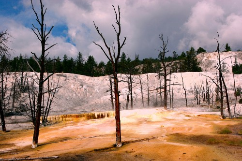 Huge magma reservoir beneath Yellowstone is two and a half times larger than expected