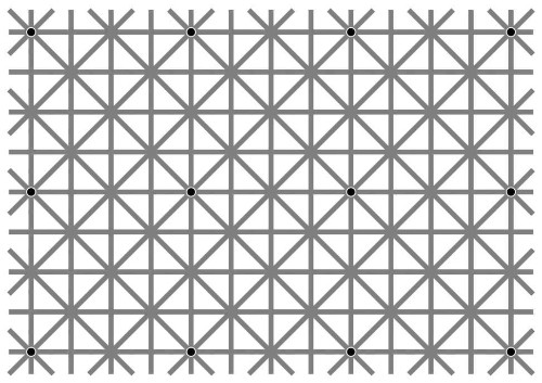 Here's why you can't see all twelve black dots in this optical illusion