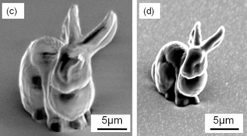 Microscopic bunny could help fight brain disorders