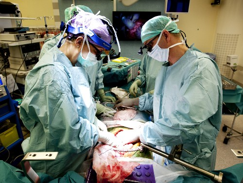 In groundbreaking procedure, doctors transplant wombs into nine women