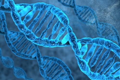 UK regulator allows gene editing of human embryos