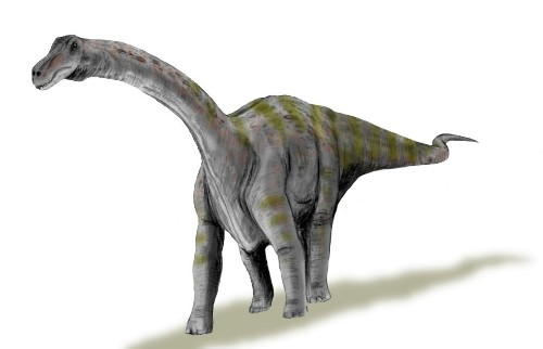 This enormous dinosaur started out life the size of a human baby and grew insanely fast