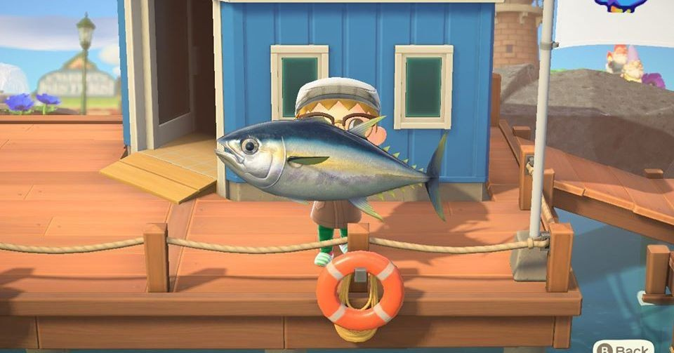 Catch these Animal Crossing: New Horizons fish, bugs, and sea creatures before October ends