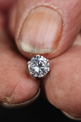 Rare African plant points the way to diamonds