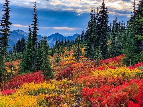 10 Seattle-area hikes for seeing beautiful fall colors