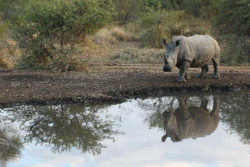 This African park has a high-tech plan to combat poachers