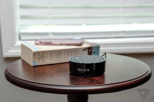 Amazon owns my Echo; I'm just feeding it