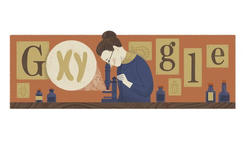 Google honors Nettie Stevens, a badass research scientist who changed genetics forever
