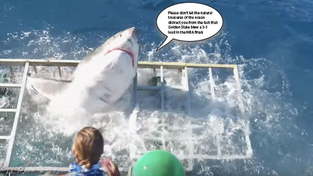 So, this video of a great white breaking into a shark cage is as terrifying as everyone says