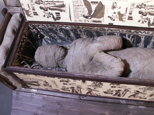 Mysterious mummy found in German attic by 10-year-old boy