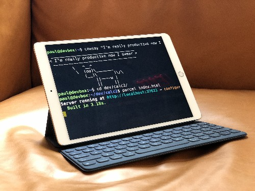 Setting up an iPad for coding is my greatest feat as a computer user