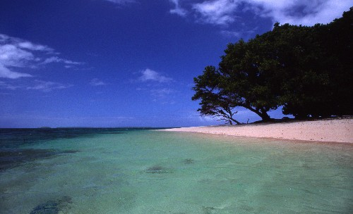 The Marshall Islands replaces the US dollar with its own cryptocurrency