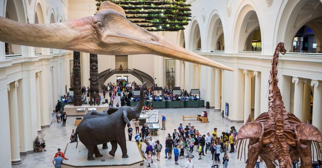 Field Museum re-opens July 17