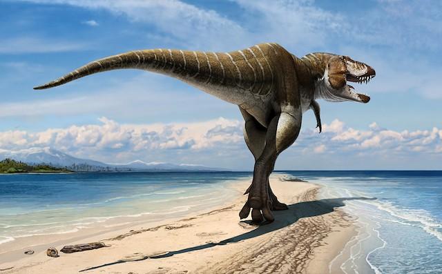 Meet T. rex's oldest relative: the 'Gore King'