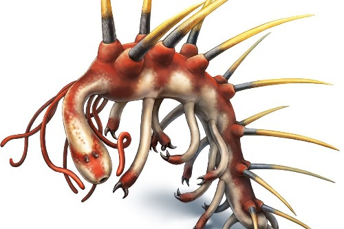 After 50 years, scientists discover head of the insane Hallucigenia 'worm'