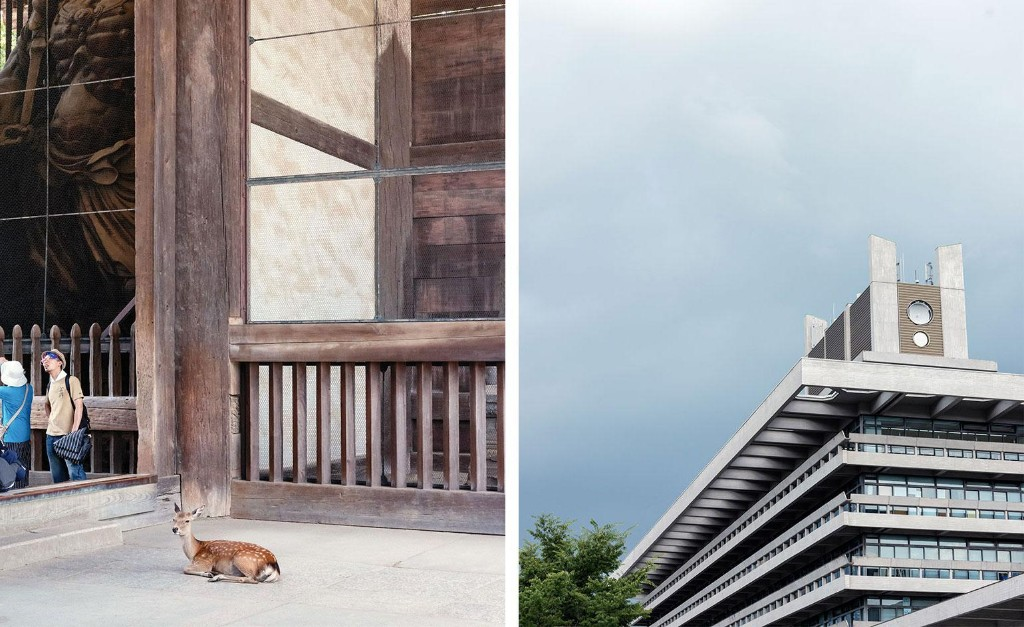 The Trip: explore the ancient and modern worlds of Nara, Japan