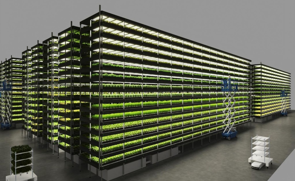 Vertical Farm in Copenhagen reimagines sustainable food