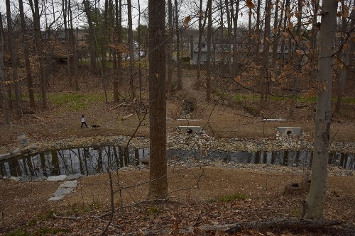 To help save the Chesapeake, we need to restore our streams