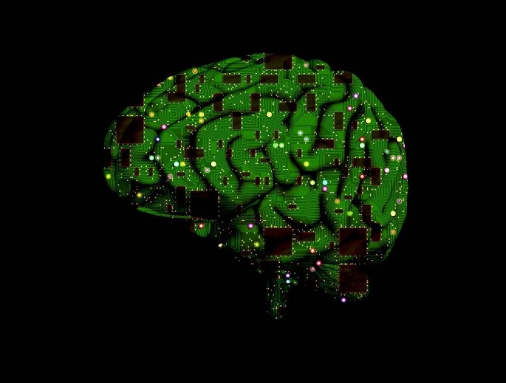 Evolutionary Cognition - Magazine cover