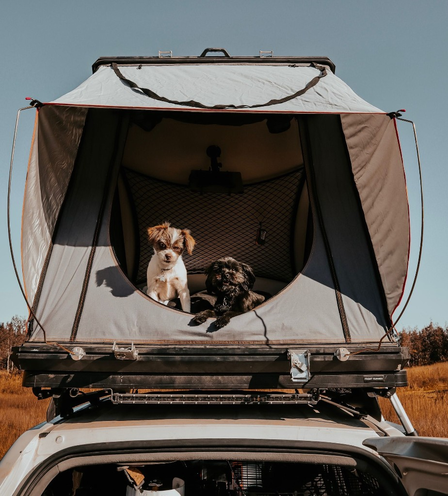 In a Dark Sky park in Pennsylvania, reaching for the stars from a rooftop tent
